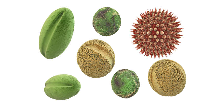 alergia polenes granada